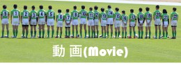 Movieタブ